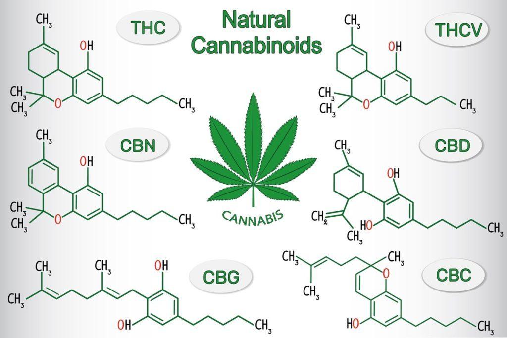 Kemijske formule THC-a, CBD-a CBG-a i ostalih spojeva u konoplji
